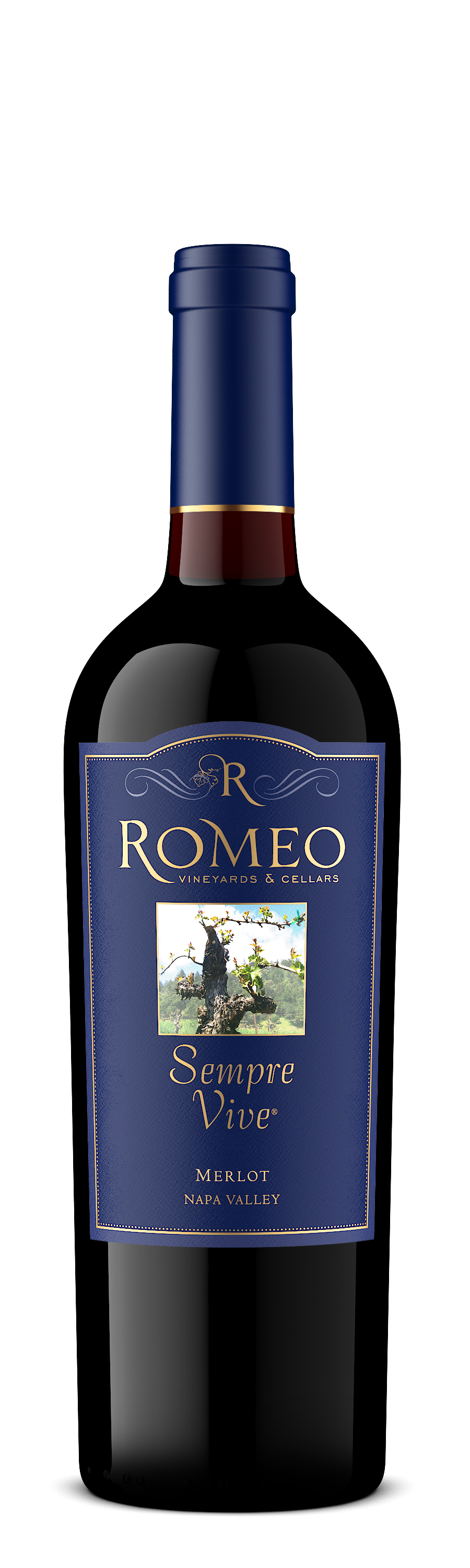 Product Image for 2014 Merlot
