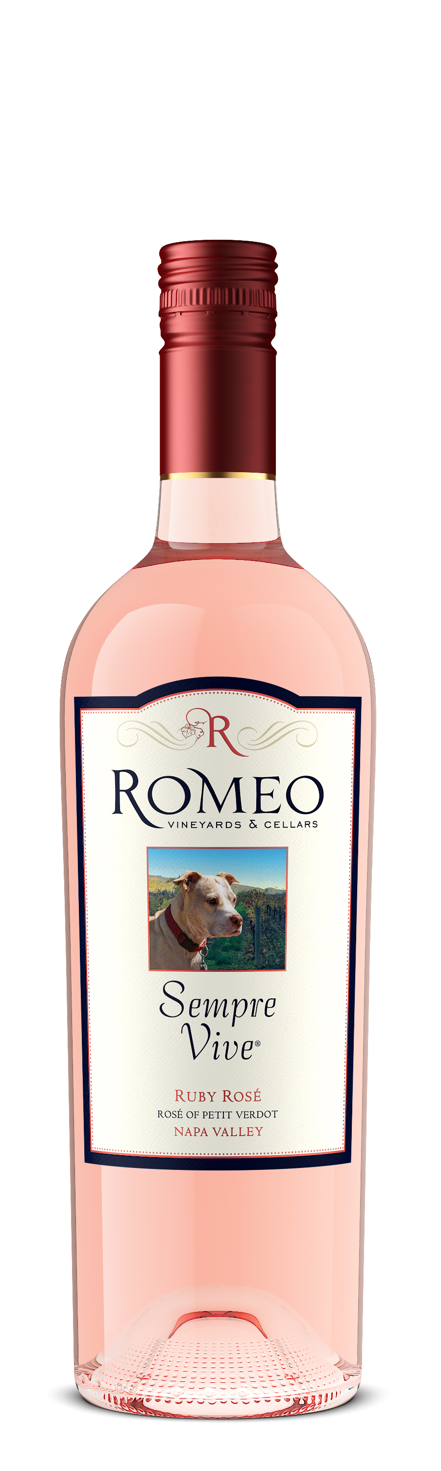 Product Image for 2018 Petit Verdot Ruby Rosé